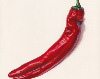 Hatch Chiles. Original egg tempera illustration from 'The Taste of America' book.