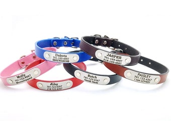 Classic Leather Dog Collar or Leash with Laser Engraved Personalized NamePlate
