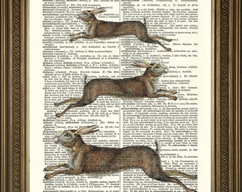 """LEAPING HARES PRINT: Countryside Animal Art, Retro Vintage Book Page Wall Hanging (8 x 10"""")"""