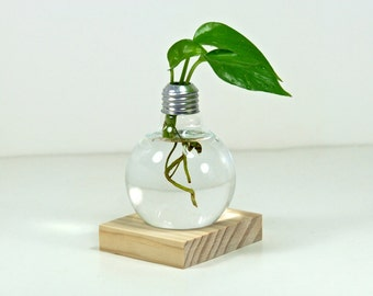 Repurposed Light Bulb Vase with Natural Wood Holder -- Modern Minimalist Glass Planter, Natural Wood Flower Vase (Plant Not Included)