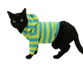 Cat Hoodie Cat Clothes Turquoise and Lime Striped Cat Hoodie pet clothing cat clothing pet clothes Cat Shirt Cat Clothes cat sweater