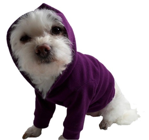 Purple Dog Hoodie-Dog Hoodies-Dog Clothes-Dog Sweater-Dog Shirts-Purple Dog Shirt-Dog Clothing-Shirts for Dogs-Dog Apparel-Dog Sweaters