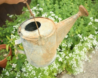 galvanized watering can, vintage garden, antique watering can, garden decor
