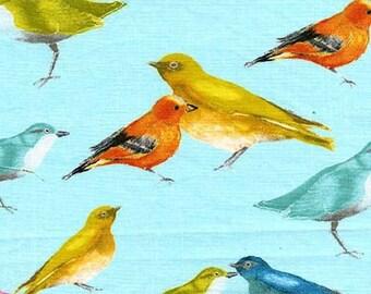 Flutter by Laura Gunn for Michael Miller - Birdies - FQ Fat Quarter yard cotton quilt fabric 415
