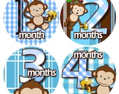 month to month baby stickers - Baby monthly stickers 1 to 12 months - Bodysuit Romper Stickers - Monthly Baby Stickers - BOY BANANA MONKEY