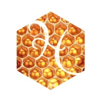 HoneycombPrint