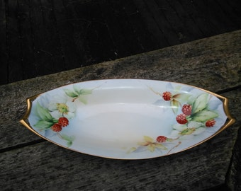 Beautiful Hand Painted Dish Marked Bavaria with Raspberries - Celery Dish - Relish Dish - Serving Dish - Serving Tray - Raspberry Decor