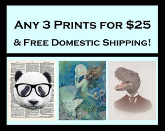 Art Print Offer Deal - 3 Prints for 25 Dollars - Free Domestic Shipping - Pick Fringe Pop Print Selection and Save!