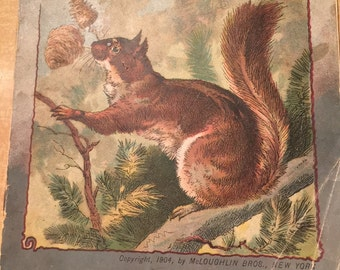 """111 Year Old """"Frisky the Squirrel"""" Chidren's Book"""