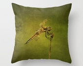 4 Spotted Skimmer Dragonfly Photo Throw Pillow, Dragonflies, Photo Pillow, Throw Pillow, Nature, Home Decor, Photography