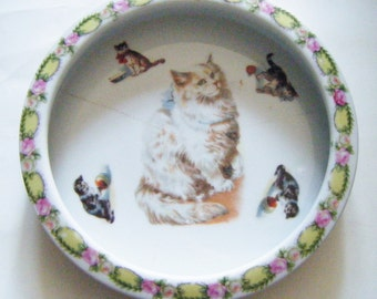 Antique Childs Baby Dish Bowl Adorable Cat Themed With Rose Chintz Border