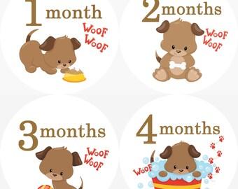 Brown Puppy Dog Monthly Birthday Stickers