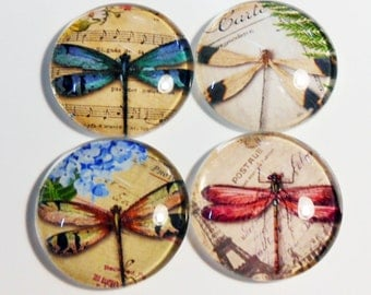 Shabby Chic - Jumbo Glass Magnets - Fridge Magnets - Dragonflies - Office Glass Magnets - Home Office Magnets - Colorful - Magnets - Mag415