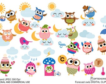Forecast Owls Weather owl Digital clip art for Personal and Commercial use - INSTANT DOWNLOAD