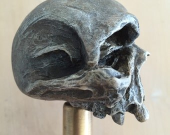 Cranium Shifterknob
