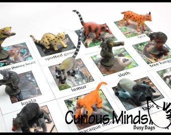 Montessori Rain Forest Animal Match - Miniature Animals with Matching Cards - 2 Part Cards.  Montessori learning toy, language materials