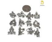 12 Pcs. Zodiac charm set- antique silver, jewelry making, jewelry design