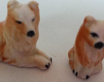 Miniature China Collies