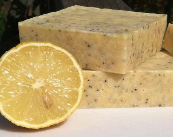 Lemon Poppyseed Solid Salt Scub