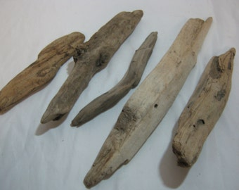 Driftwood Pieces - Bulk Driftwood -  Beach Wood Craft Supplies - 5 Piece Assortment