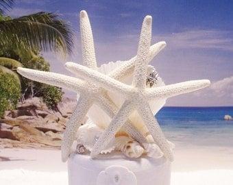Starfish Cake Topper - Sea Shells - Seaside Cake Topper - Beach Cake Topper - Cake Topper - for Small Or ANY SIZE Cake - Cottage Cake Topper