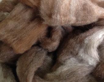 Alpaca Cormo Silk Roving