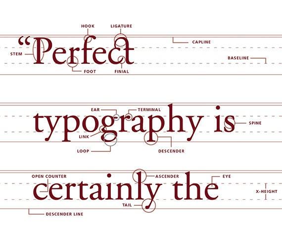 Anatomy of typeface