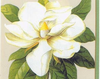 Decoupage Napkins | Magnificent Magnolias  | Botanical Napkins | Floral Napkins | Magnolia Napkins | Paper Napkins for Decoupage