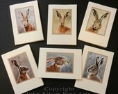 Pack of 6 assorted Wild Hare Portraits Hand Made Greetings Cards. From a Original Paintings by Award Winning Artist JOHN SILVER. GCHAmulti01