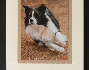 Border Collie Dog Portrait Hand Made Greetings Card. From Original Paintings by JOHN SILVER. GCBC015