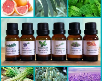 Set of 6 Pure Essential Oils for Beginners .5 oz (15ml) Each Bottle 100% Uncut with Euro Dropper