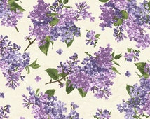 Fresh Lilacs, Maywood Studios, Beautiful Lilacs on Cream Background by Debbie Beaves (By 1/2 yd)