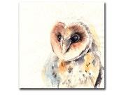Barn Owl Bird Original Watercolor Painting, Bird Painting Art, Watercolour Art