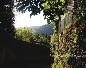 The Road to Florence, Fiesole Italy Photography