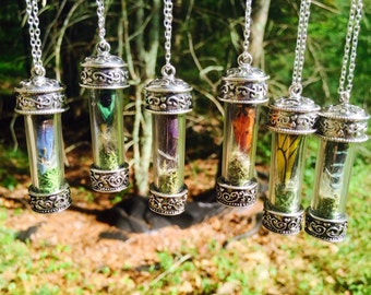 the butterfly terrarium necklace