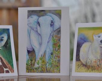 Animal Series Card Trio