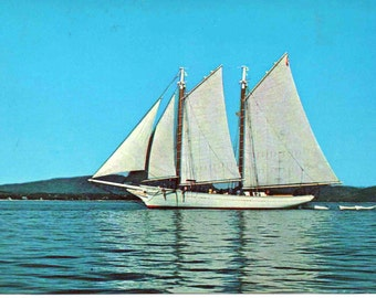 Used postcard of Schooner Mary Day, near Mount Desert Island, Maine, 1973, a little wear