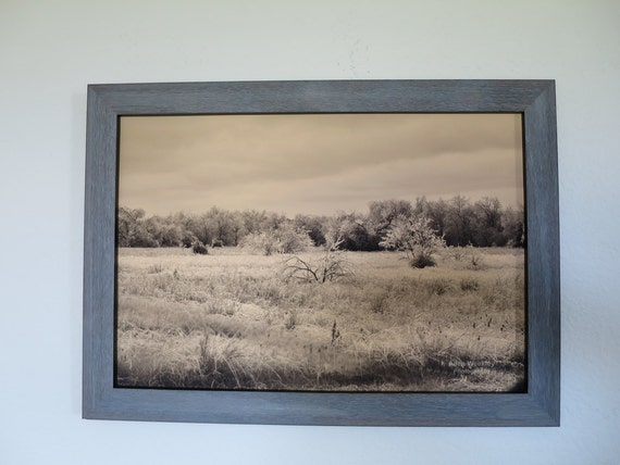 Ice Field Framed Photograph