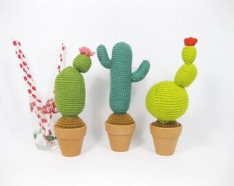 Crochet cactus,interior piece,Amigurumi ,Plant