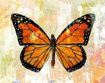 Monarch, #1