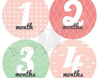 Monthly Baby Onesie Stickers Girl - Pattern Design