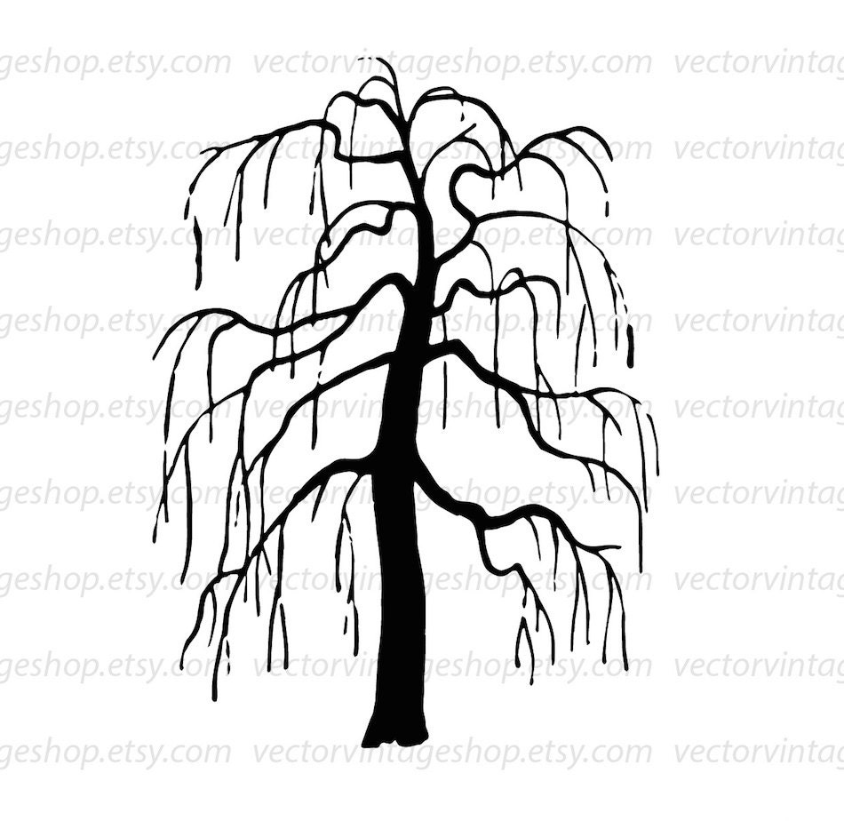 weeping willow tree vector clipart  bare tree silhouette clip art  commercial use halloween Primary Colors Activity Primary and Secondary Color Chart