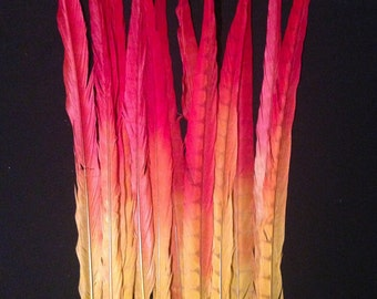 Custom Dyed Lady Amherst Feathers-Tequila sunrise