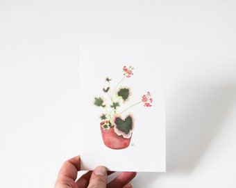 Watercolor Geranium in a Clay Pot Botanical Print 4x6, 5x7 or 8x10