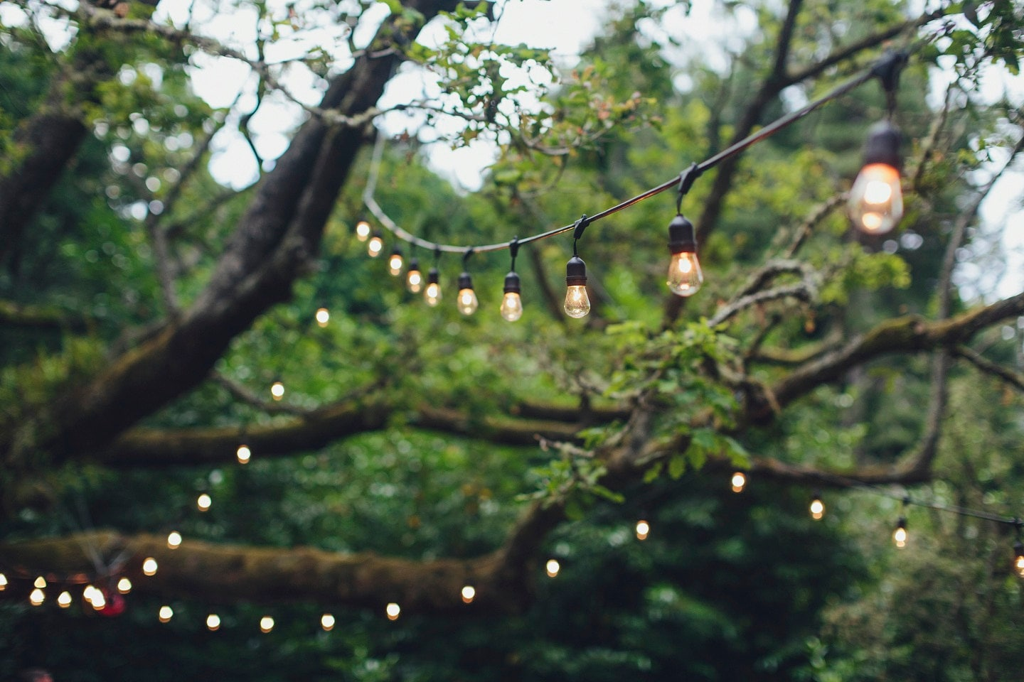 Outdoor String Lights Etsy : Christmas Lights - Vintage outdoor string lights for wedding, party, patio,with 24 edison ...