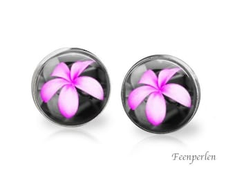 Earrings pink colour