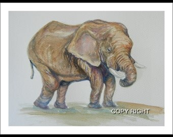 Original water color painting, Baby elephant 11x10 inch paper with 0.5in edge, brown, animal painting, elephant, 150101