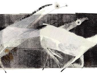 El caballo del malo. Night