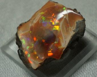 Shewa Mezezo Pink Blonde Ethiopian Opal Polished Nodule Specimen