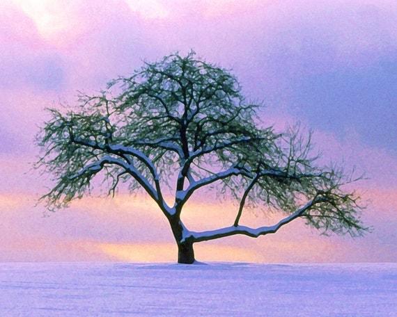 Resultado de imagen de árbol de invierno al anochecer